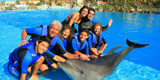 swim with dolphins cabo san lucas